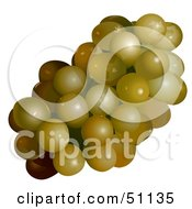 Royalty Free RF Clipart Illustration Of A Cluster Of Golden Grapes