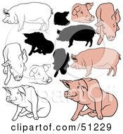 Royalty Free RF Clipart Illustration Of A Digital Collage Of Pigs In Color Outlines And Silhouettes Version 6