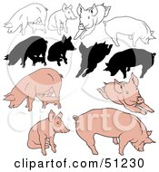 Royalty Free RF Clipart Illustration Of A Digital Collage Of Pigs In Color Outlines And Silhouettes Version 3