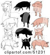 Royalty Free RF Clipart Illustration Of A Digital Collage Of Pigs In Color Outlines And Silhouettes Version 1