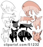 Royalty Free RF Clipart Illustration Of A Digital Collage Of Pigs In Color Outlines And Silhouettes Version 4