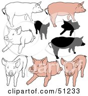Royalty Free RF Clipart Illustration Of A Digital Collage Of Pigs In Color Outlines And Silhouettes Version 5