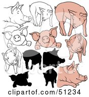 Royalty Free RF Clipart Illustration Of A Digital Collage Of Pigs In Color Outlines And Silhouettes Version 7