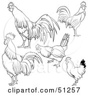 Royalty Free RF Clipart Illustration Of A Digital Collage Of Rooster Outlines Version 3 by dero