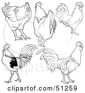 Royalty Free RF Clipart Illustration Of A Digital Collage Of Rooster Outlines Version 2 by dero