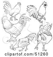 Royalty Free RF Clipart Illustration Of A Digital Collage Of Rooster Outlines Version 1 by dero