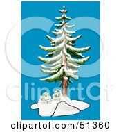Clipart Illustration Of An Evergreen In Winter