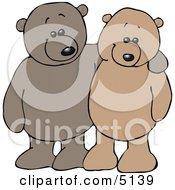 Teddy Bear Pals