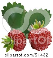 Royalty Free RF Clipart Illustration Of Two Fresh Wild Strawberries And Leaves