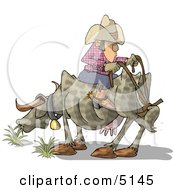 Funny Cowboy Sitting Backwards On Cow Clipart by Dennis Cox