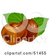 Royalty Free RF Clipart Illustration Of Two Hazelnuts And Leaves