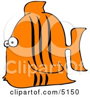 Aquarium Tigerfish Clipart