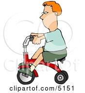 Boy Riding A Tricycle Bike