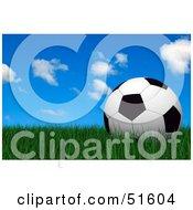 Royalty Free RF Clipart Illustration Of A Soccer Ball Resting Still On Green Grass Under A Blue Sky by stockillustrations #COLLC51604-0101