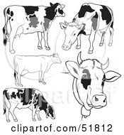 Royalty Free RF Clipart Illustration Of A Digital Collage Of Black And White Dairy Cow Outlines Version 2