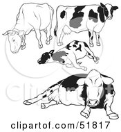 Royalty Free RF Clipart Illustration Of A Digital Collage Of Black And White Dairy Cow Outlines Version 1 by dero