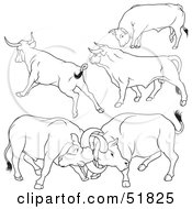 Royalty Free RF Clipart Illustration Of A Digital Collage Of Black And White Bull Outlines Version 10 by dero