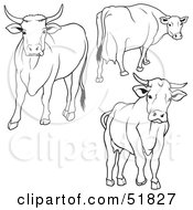 Royalty Free RF Clipart Illustration Of A Digital Collage Of Black And White Cow Outlines Version 2 by dero