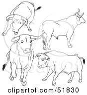 Royalty Free RF Clipart Illustration Of A Digital Collage Of Black And White Bull Outlines Version 6 by dero