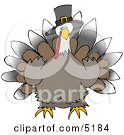 Wild Thanksgiving Turkey Wearing Pilgrim Hat Clipart