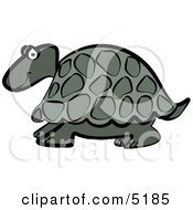 Grey Cartoon Turtle Clipart