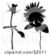 Poster, Art Print Of Digital Collage Of Floral Elements - Version 10
