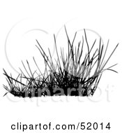 Poster, Art Print Of Digital Collage Of A Black Grass Silhouette - Version 3