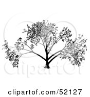 Royalty Free RF Clipart Illustration Of A Black Tree Silhouette Version 2