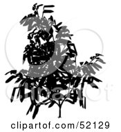 Royalty Free RF Clipart Illustration Of A Leafy Tree Branch Silhouette