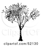 Royalty Free RF Clipart Illustration Of A Black Tree Silhouette Version 1
