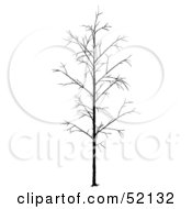 Royalty Free RF Clipart Illustration Of A Bare Tree Silhouette Version 2