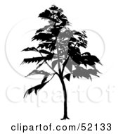 Royalty Free RF Clipart Illustration Of A Black Tree Silhouette Version 5
