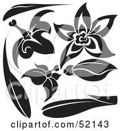 Poster, Art Print Of Digital Collage Of Floral Elements - Version 13