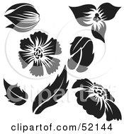 Poster, Art Print Of Digital Collage Of Floral Elements - Version 7