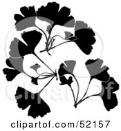 Royalty Free RF Clipart Illustration Of A Digital Collage Of Silhouetted Ginkgo Biloba by dero