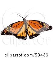 Royalty Free RF Clipart Illustration Of A Spotted Orange Monarch Butterfly Bug