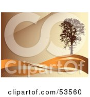 Royalty-Free (RF) Clipart Illustration of a Silhouetted Brown Tree On Waves Of Orange, On A Brown Background by David Barnard #COLLC53560-0126
