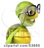 3d Green Tortoise Wearing Spectacles And Facing Right