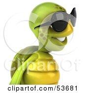 3d Green Tortoise Wearing Dark Shades