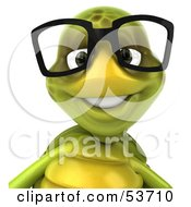 Royalty Free RF Clipart Illustration Of A 3d Green Tortoise Wearing Big Glasses And Smiling