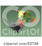 Cute 3d Green Tree Frog Using A Laptop Pose 6 by Julos