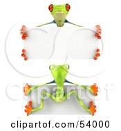 Front And Back Views Of A 3d Green Poison Dart Frog Holding A Blank Sign