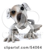 3d Jack Russell Terrier Pooch Character Walking On All Fours Pose 2 by Julos