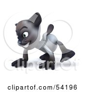 Royalty Free RF Clipart Illustration Of A 3d Siamese Pussy Cat Character Walking On All Fours Pose 1