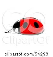 Royalty Free RF Clipart Illustration Of A 3d Shiny Ladybird Pose 5