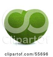 Grassy Green 3d Heart