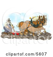 Belgian Horses Pulling A Farmer On A Plough Clipart Illustration