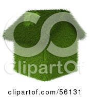 Royalty Free RF Clipart Illustration Of A 3d Grass Home Version 2