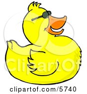 Happy Yellow Duck Wearing Sunglasses Clipart Illustration