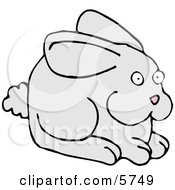 Alert Gray Bunny With A Puffy Tail And Pink Nose Clipart Illustration